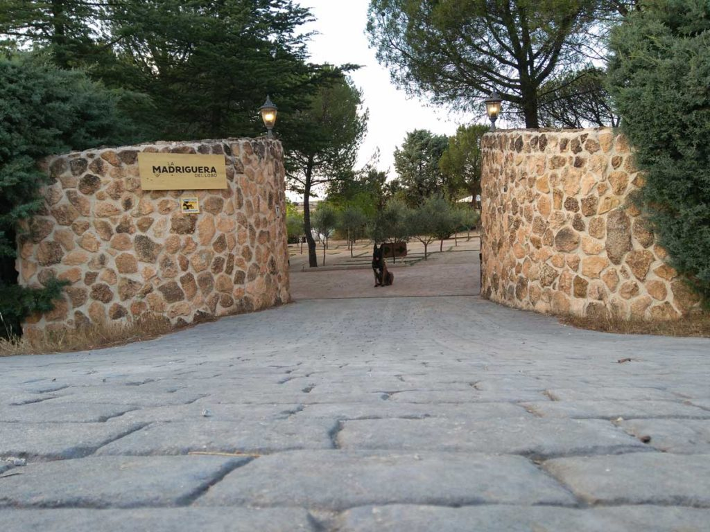 Entrada Residencia Canina en Madrid Madriguera del Lobo