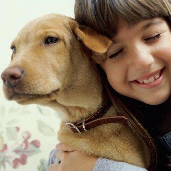niños con miedo a los perros
