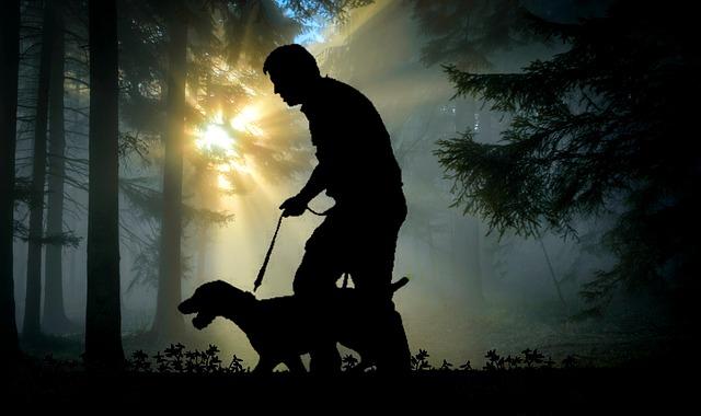 adiestrador canino profesional