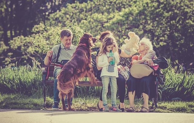 adiestramiento canino familias