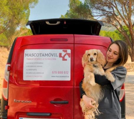 guardería canina con transporte